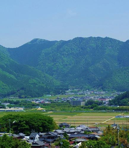 0731ishihara01.jpg