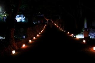 1409k-night08.jpg
