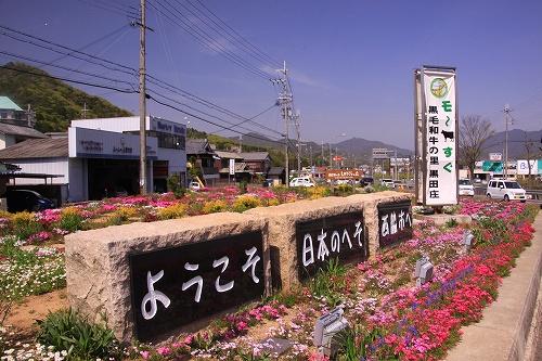 1504shiba02.jpg