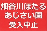 【イベント中止】畑谷川ほたる観賞・都麻乃郷あじさい園の受入れを中止