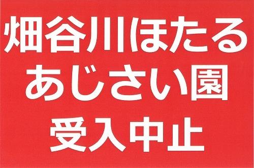 syuchi01.jpg
